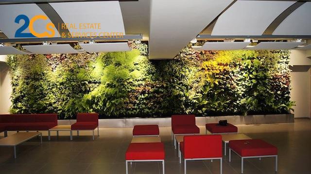 Hệ thống đèn rọi được bố trí ở trần để tăng hiệu ứng chiếu sáng và thẩm mỹ cho vườn treo