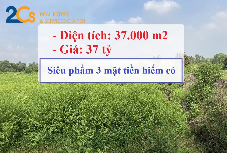 Siêu phẩm Lô đất hơn 3 mẫu với 3 mặt tiền sông Vàm Cỏ Đông tại huyện Bến Lức, tỉnh Long An