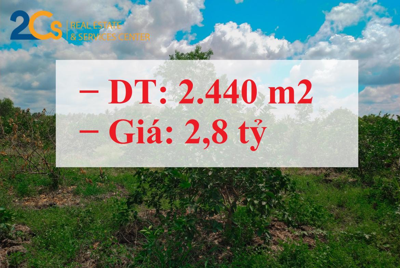 Bán hơn 2.000m2 đất mặt tiền đường tại tỉnh Long An − Diện tích : 2.440,1 m2 (74x34m) − Giá: 2,8 tỷ (còn thương lượng)