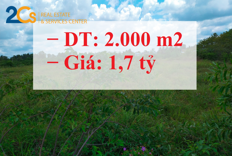 Bán gần 2.000 m2 đất mặt tiền rộng 50m tại Long An